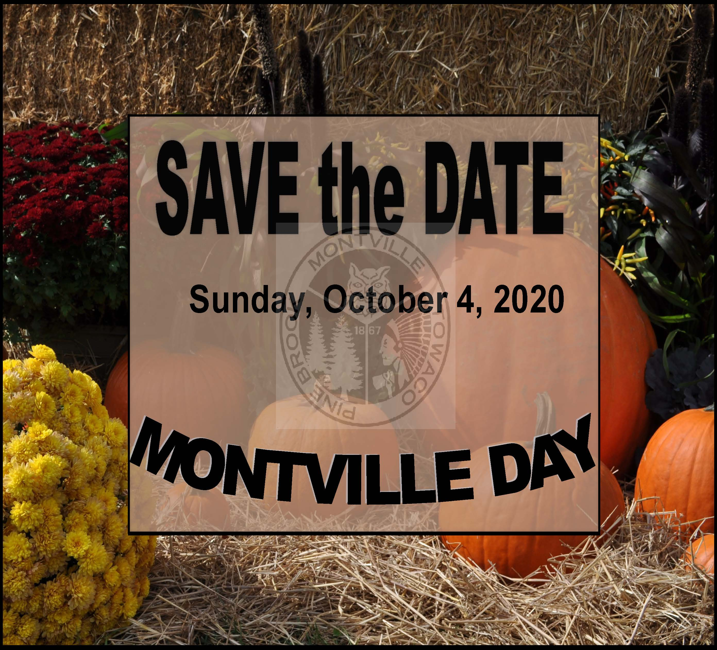 Montville Day 2020 Save